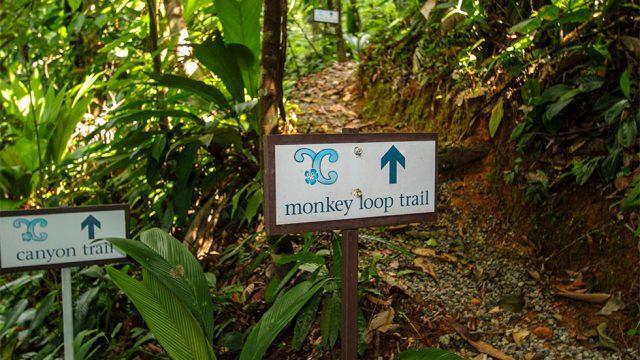 Internal Hiking Trails