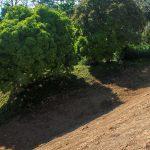 Farmable Land