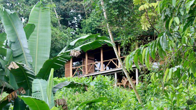 Home in Organic Community Tinamastes