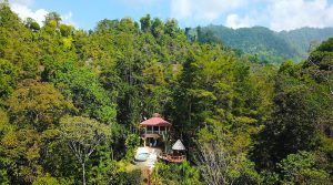 Two Tropical Homes with Ocean View in the Forested Hills Above Uvita