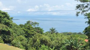 High Demand Ocean View Lot in the Heart of Escaleras