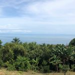 Western Ocean View