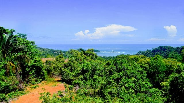 Premier Estate Property in Dominical