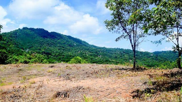 6.07-Acre Land Parcel