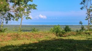 Multiple Properties in San Buenas with Ocean and Mountain Views