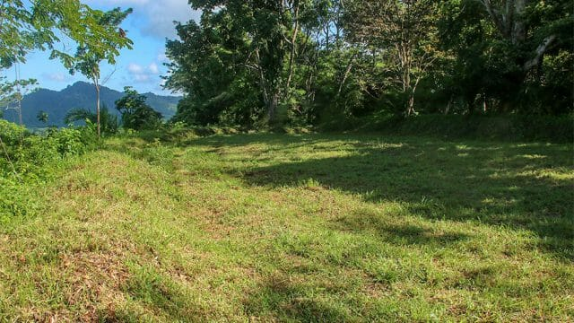 From 8+ Acres to Over 14 Acres