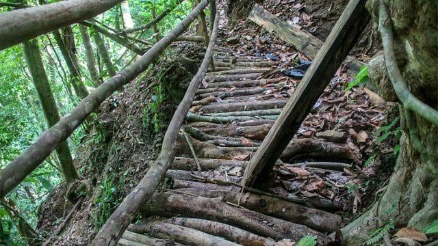 Rustic Trails