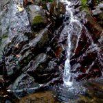 Waterfall Near Property