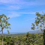 Close to Marino Ballena National Park