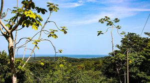 Sunset Ocean View Building Lot Off of Private Road in Uvita