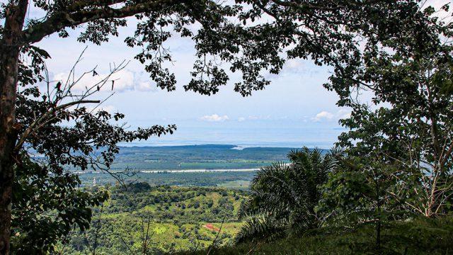 Terraba River Views