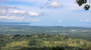 Over 40 Acres of Hillside Forest with Gorgeous Ocean and River Views