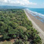 Multiple Premier Beachfront Lots