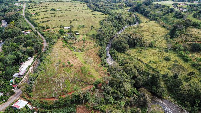 6.6 Acres in San Isidro