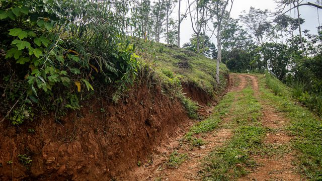 Internal Road Along Property Line