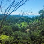 34.5 Acre Property in Uvita