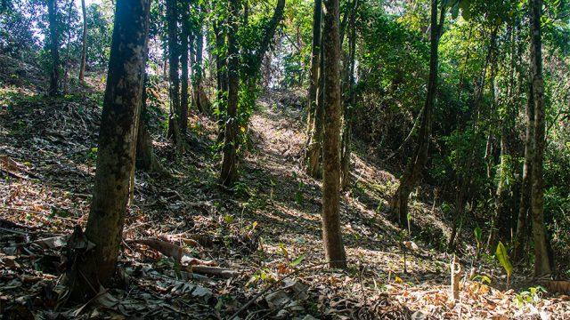 Upper Ridge Build Site