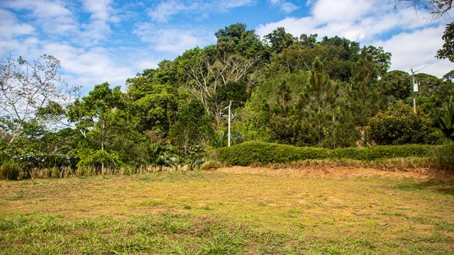 Large Graded Home Site