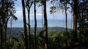 Private Whale Tail Ocean View Property in the Uvita Mountains
