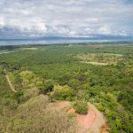 Affordable Home Sites in Playa Matapalo
