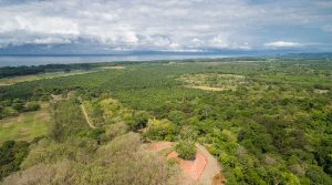 Affordable Ocean and Jungle View Home Sites Near Playa Matapalo