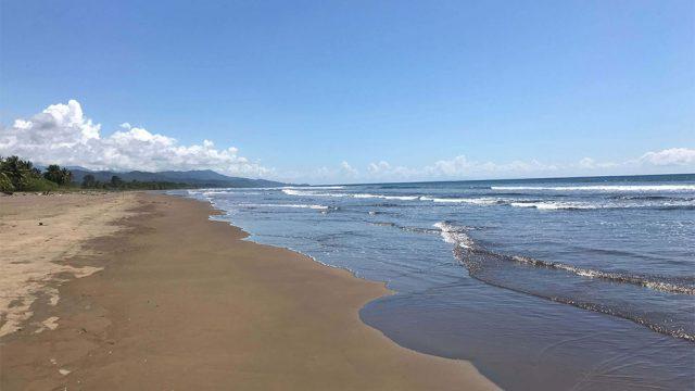 Minutes to Playa Matapalo