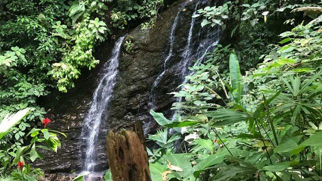Community Waterfall