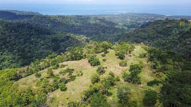 227 Acres Subdivided Lots