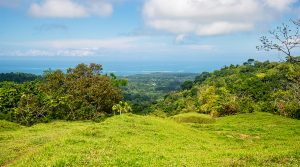 Picturesque Investment Overlooking the Whale's Tail In Uvita