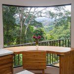 Lush Rainforest Views
