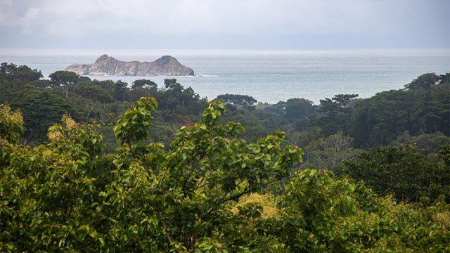 Isla Ballena View