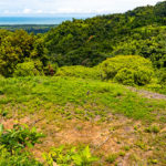 55 Acre Purchase Option
