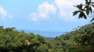 Beautiful Ocean Views From this Affordable Lot in Tres Rios Ojochal
