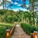 14.5-Acre Property in Lagunas Dominical