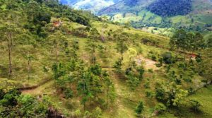 Off-the-Grid Farm with Multiple Homes Sites in Santa Teresa San Isidro