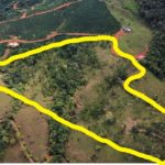 14.46 Acre Property in San Isidro Costa Rica