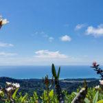 Beautiful Lagunas Community
