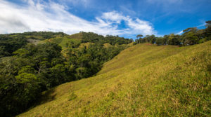 30 Acres with Oversized Homesite Overlooking San Isidro Valley