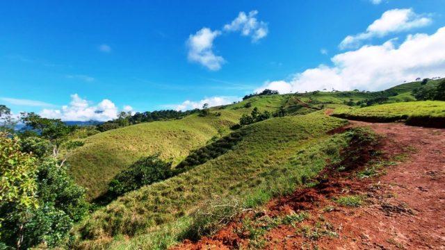 Gentle Rolling Hillsides