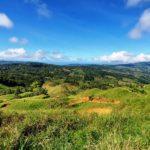 118.61 Acre Land Parcel