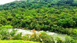 Riverside Farm Near San Geraldo Region Perfect for Permaculture