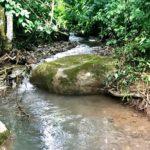 Fresh Creek on Property