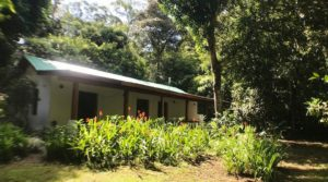 Spacious Country Home with Cool Tropical Climate in Platanillo
