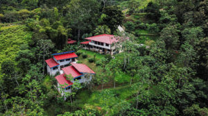 Award Winning Turnkey Jungle Eco-Lodge on Hillside Near Dominical