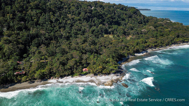 14.3 Acre Oceanfront Property in Osa Peninsula