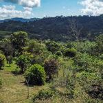 8.73 Acre Property