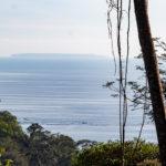 Window Ocean View