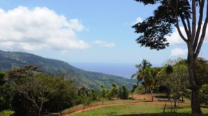 Two Building Sites Above Uvita with Whale Tail Ocean Views on 49 Acres