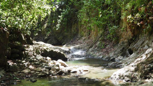 Serene Riverfrontage