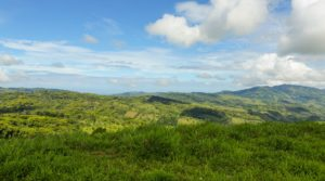 Over 100 Acre Property in Platanillo with Ocean View and 4 Springs